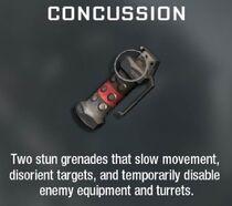Concussion Grenade Create-A-Class BO