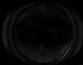 Scoped Mosin-Nagant Sights CoD