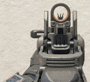Peacekeeper Iron Sights BO4