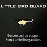 Modern-warfare-3-killstreak-little-bird-guard