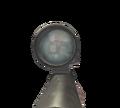 WaW ptrs41 scope