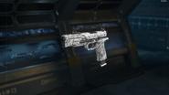 RK5 Gunsmith Model Ash Camouflage BO3