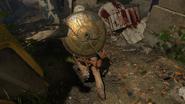 ApollosWill ThirdPerson Back AncientEvil BO4