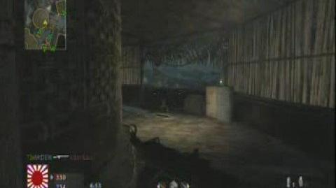 Call of Duty 5 (Waw) Beta MP40 Gameplay