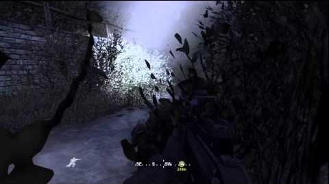 Call of Duty 4 Modern Warfare - Campaign - Hunted