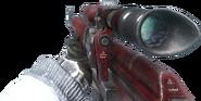 Dragunov Red BO