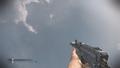 Bizon Flash Suppressor CoDG