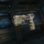 MR6 Gunsmith model Woodlums Camouflage BO3.png
