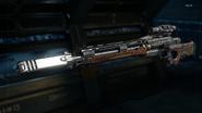 Drakon Gunsmith model Silencer BO3