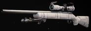 Pelington 703 Cosmonaut Gunsmith BOCW