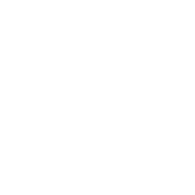 Close Quarters Weapon Perk icon WWII.png