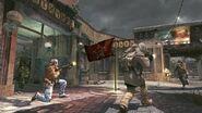 Flag Firefight Zoo BO
