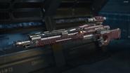 Drakon Gunsmith model Transgression Camouflage BO3
