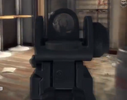 Vector CRB iron sights CODG