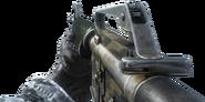 M16 Flora BO