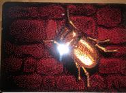 Zork PostCard6 Back PawnTakesPawn