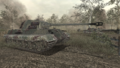 Their Land Their Blood Tiger II Wii CoD WaW