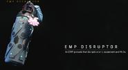 EMP Disruptor BO4