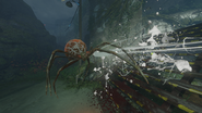 Spider web attack ZNS BO3