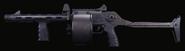 Streetsweeper Gunsmith Model BOCW