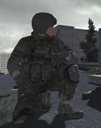 Call of Duty 4 Loyalist