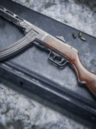 PPSh-41 Preview BOCW