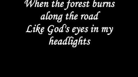 Johnny_Cash_-_Rusty_Cage