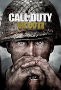 Call of Duty WW II Poster