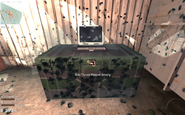 M9 marking an armory Survival Mode MW3