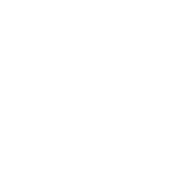 Efficient Weapon Perk icon WWII.png