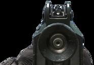 CBJ-MS iron sights CoDG