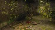 Acid trap effects Blood of the Dead BO4