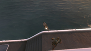 Игрок запустил охотника