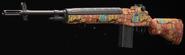 DMR 14 Groovy Gunsmith BOCW