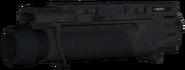 FN EGLM model CoDG