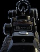 SWAT-556 iron sights BOII