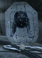 Dogs Mihen MW3