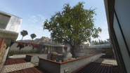 Raid courtyard BOII
