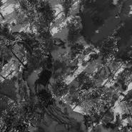 MoraskoSatelliteCapture0983 Intel Satellite Onslaught Zombies BOCW