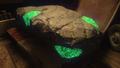 Green Divinium Easter Egg 1 Origins BO3