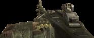 M60 BO