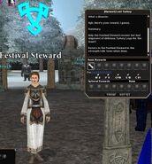 Festival steward