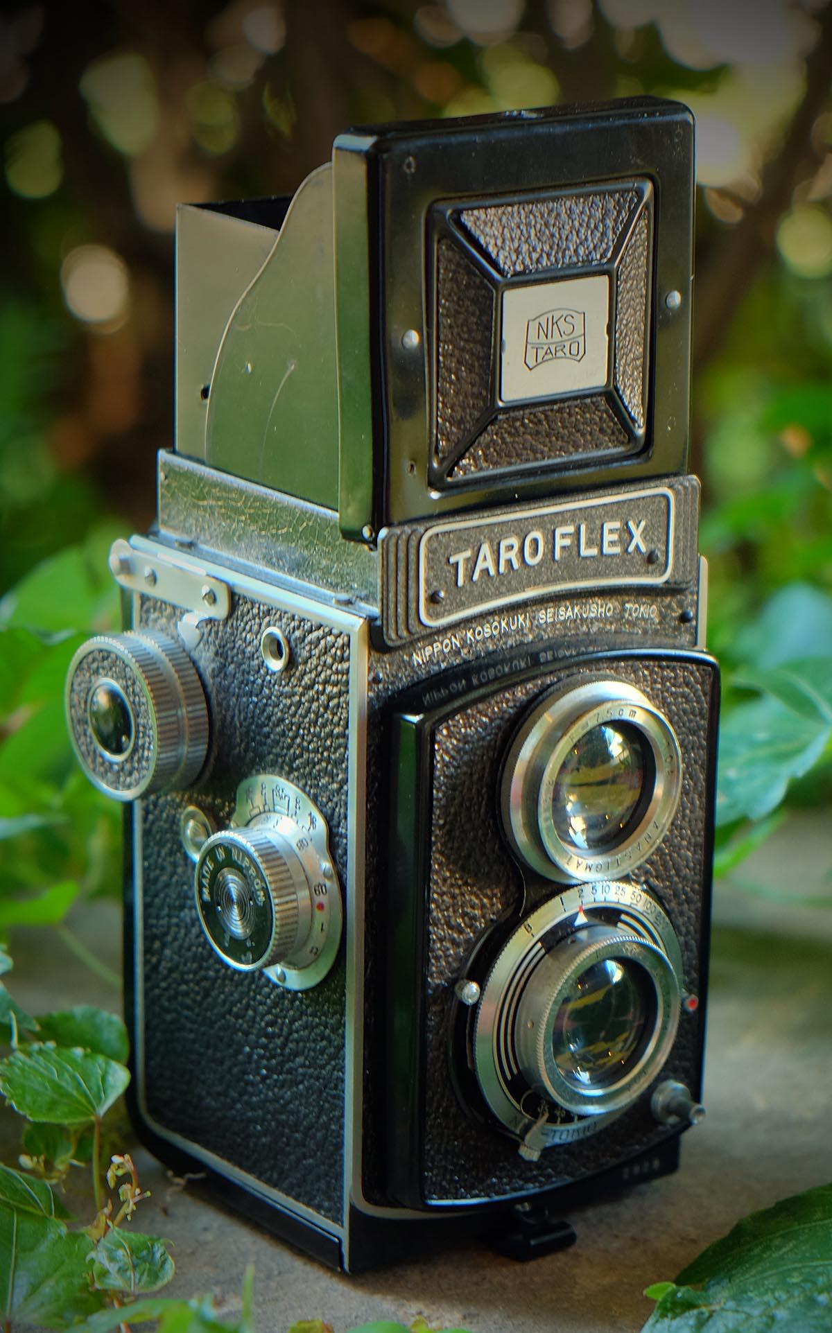 Taroflex