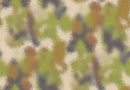 EDP-W Alpha (Enhanced Disruptive Pattern- Woodland Alpha)