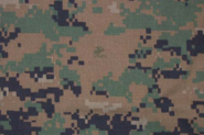 Wikia-Visualization-Main,camouflage