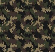 RG-WPA (Reserve Guard Woodland Pattern Alpha)
