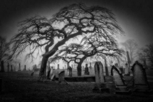 Black and white graveyard.jpg