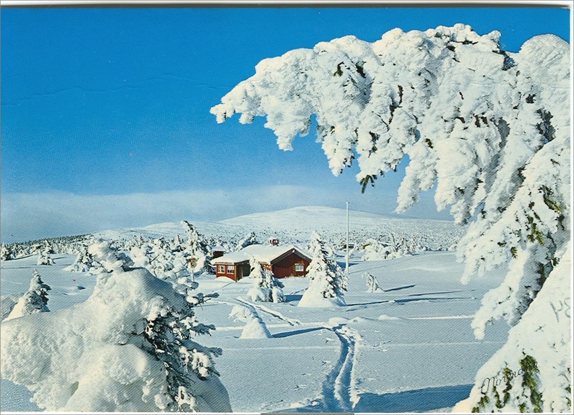 Norway.png