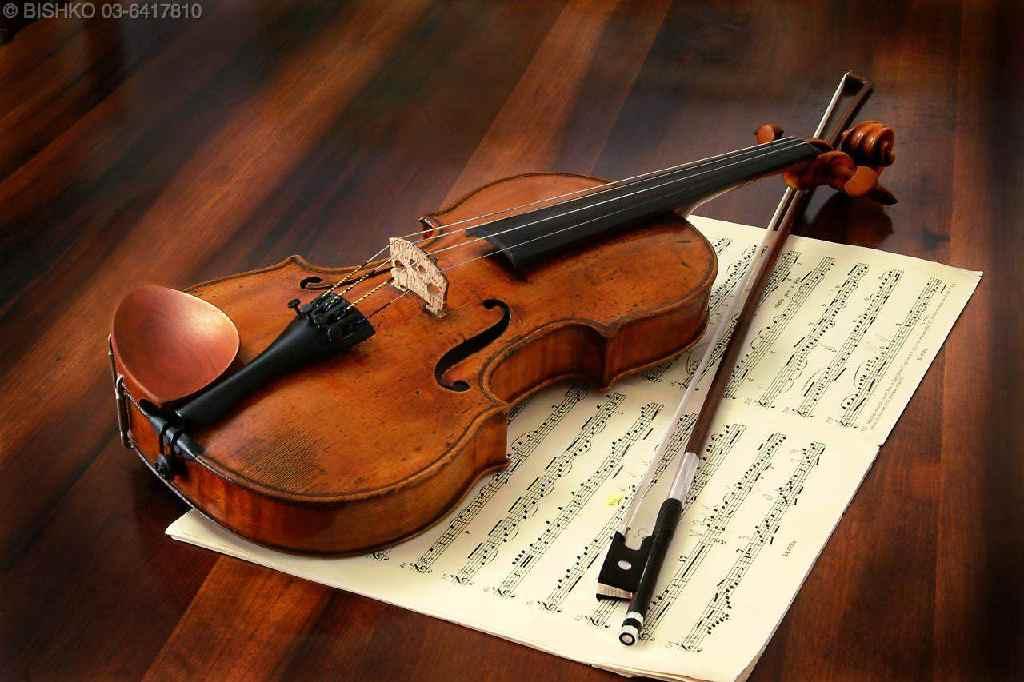 ViolinWNotes.jpg