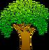 Tree-hi.png